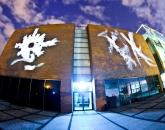 """""""Video-mural"""", Skyway '11"""