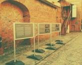 Wystawa w Toruniu